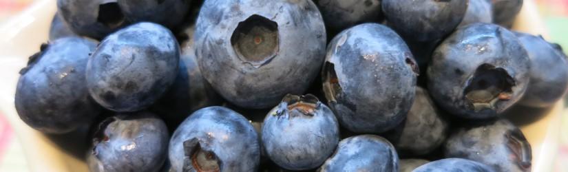 Heidelbeeren – Heimisches Superfood mit vielen Vitalstoffen