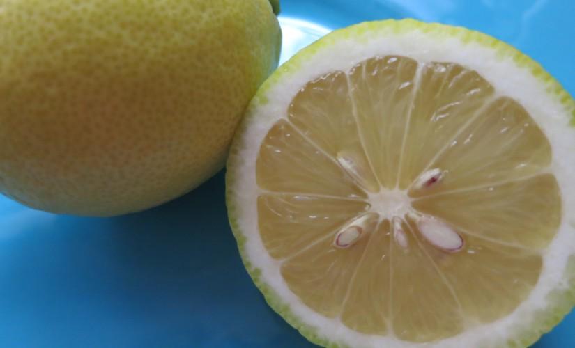 Zitrone – am Morgen, vertreibt Kummer und Sorgen