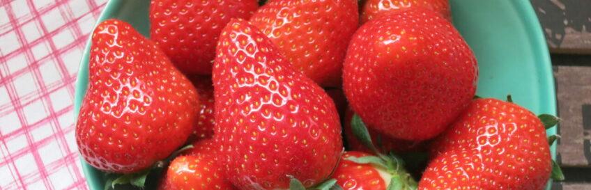 Erdbeercarberia – die besten Low-Carb-Rezepte mit Erdbeeren