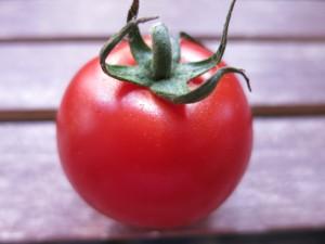 Tomaten 034